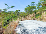 1,800 sq.m. panoramic sea view land located in Bophut: 1,800 sq.m. panoramic sea view land located in Bophut for sale @sunwaysamui